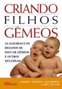 gemeos_big